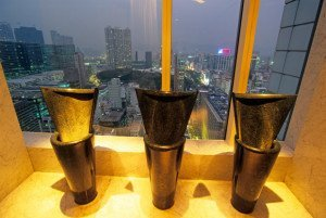 toilets with amazing views